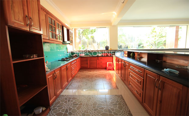 Stylish Regal Home Available for Rent in Ho Chi Minh City