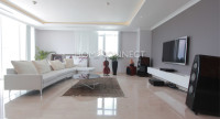 living-penthouse-apartment-for-rent-in-district1-ap010081