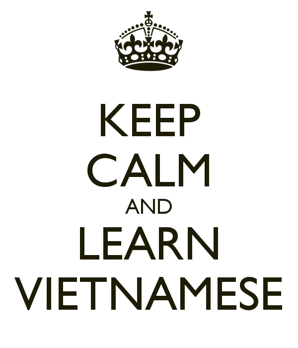 Vietnamese for expats